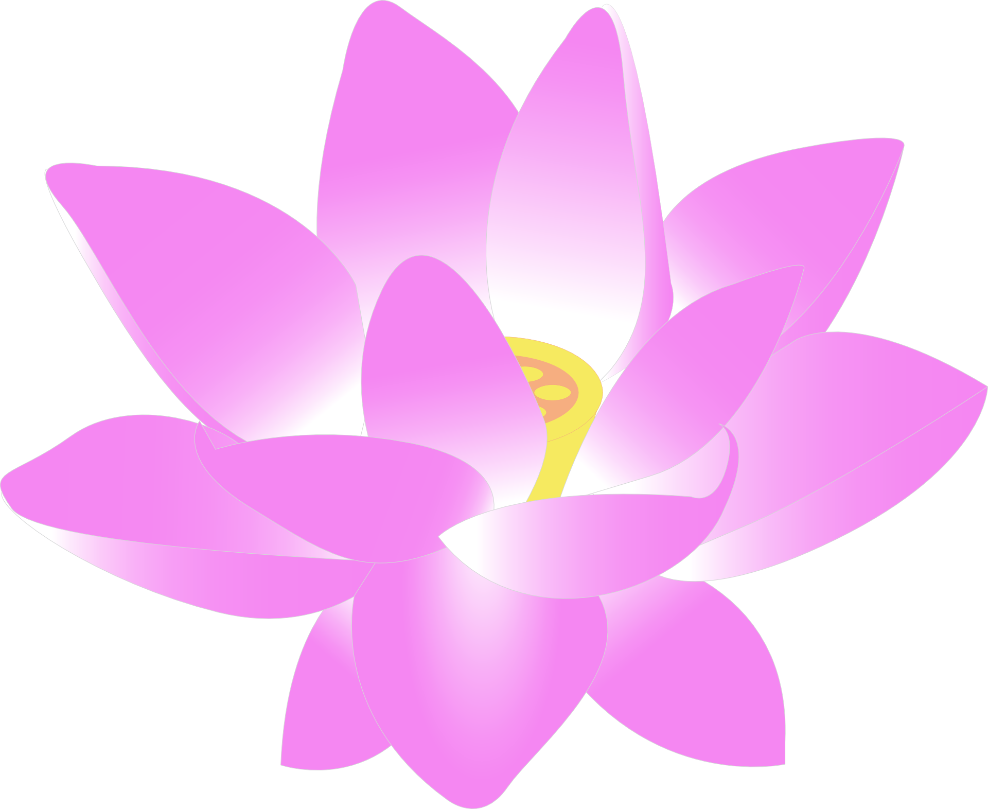 The Lotus Tree - Export Taoist Practices